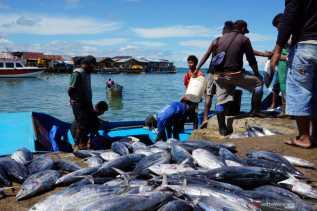 Poros Maritim Dunia Jangan Tinggalkan Nelayan Tradisional