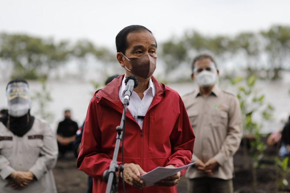 Jokowi: Rehabilitasi Mangrove di Riau Akan Terus Kita Lakukan