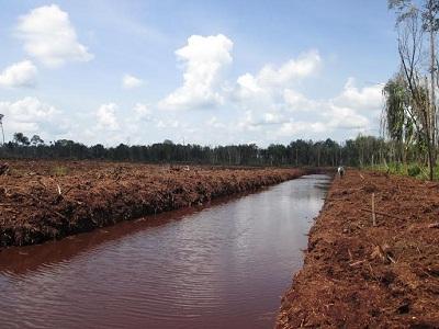 Warga Pulau Padang Meranti Resah Adanya Kegiatan Galian Kanal RAPP
