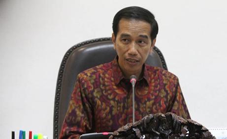 Presiden Akan Keluarkan Moratorium Lahan Sawit dan Tambang