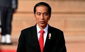 Presiden Jokowi akan Berkunjung ke Riau Selama Dua Hari