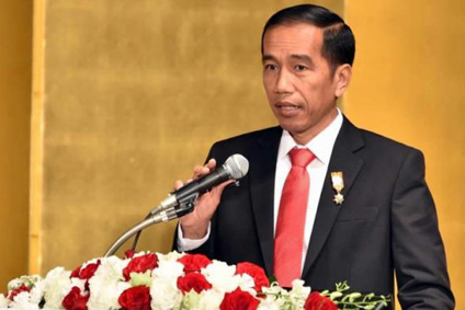 Hina Jokowi Pakai Baju Adat Batak, Facebooker Dilaporkan ke Polda Sumut