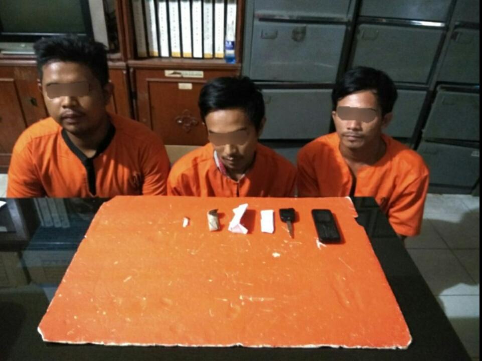 Sedang Asyik Menggunakan Ganja, 3 Pelaku Tercyduk Polisi
