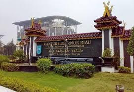 Sosok Ideal Gubernur Riau ke Depan Menurut Akademisi