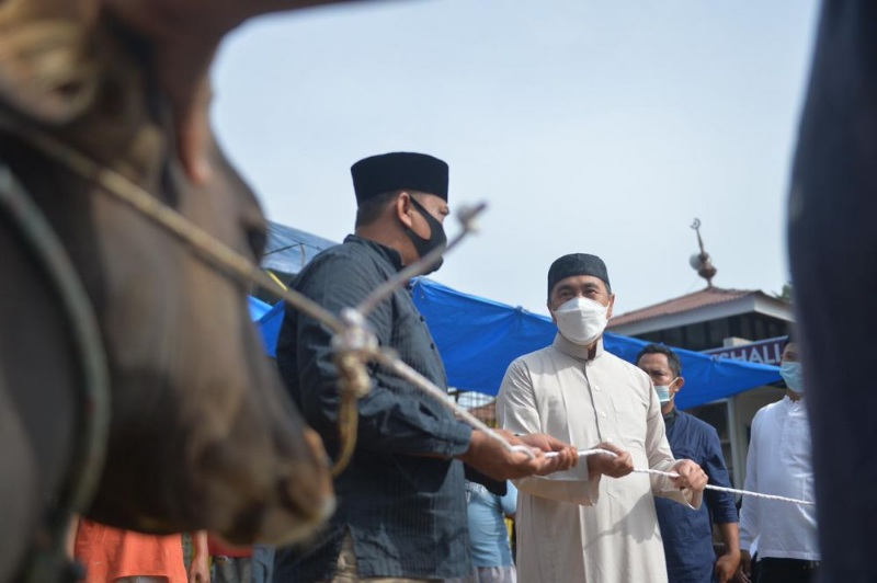 Gubernur Riau Shalat Ied di Kediaman, Ingatkan Petugas Kurban Patuhi Prokes