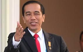 Jokowi akan Buka Rapimnas Demokrat, Tak Ada Deklarasi Capres