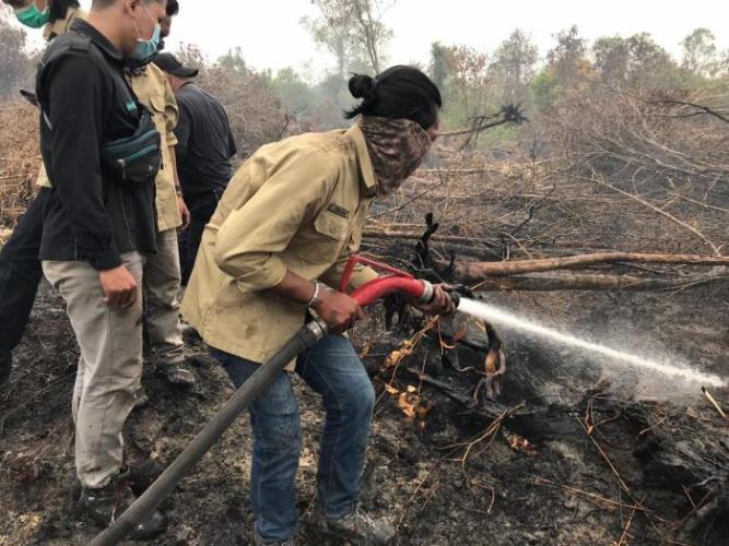 Mahasiswa Kehutanan Turut Padamkan Kebakaran Lahan di Rimbo Panjang