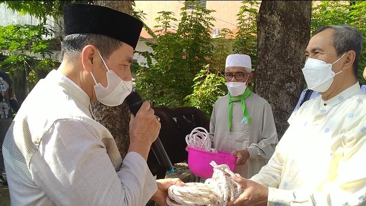 Syamsuar Serahkan Sapi Kurban ke PWRI Riau
