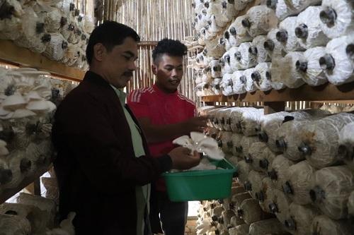 DMPA Arara Abadi Berdayakan Pemuda, Tingkatkan Ekonomi Warga Okura