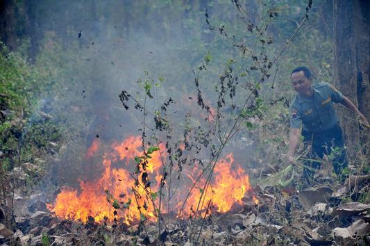 """Menyibak Pembelajaran Dari Kebakaran  Pada Hutan Dan Lahan Yang Tidak Dikelola"""