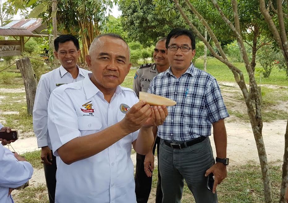 Gubernur Riau Kunjungi Taman Nasional Tesso Nilo