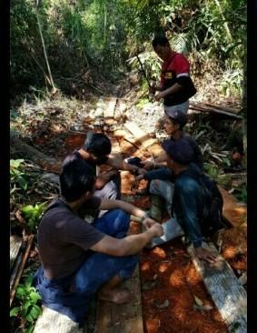Polres Bengkalis Tangkap 6 Perambah Hutan Cagar Biosfer