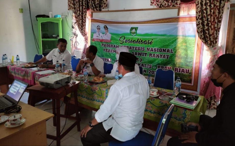 Plt Kadisbun Rusmadi dan Tim Bergerak ke Rupat untuk Sosialisasi