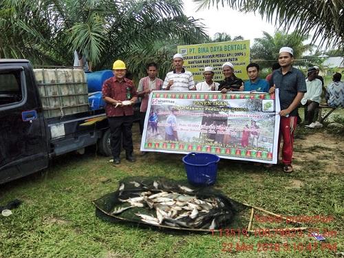 PT. Bina Daya Bentala dan  kelompok Tuah kampong Panen Patin Program DMPA.