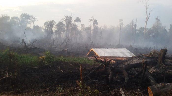 Lahan di Sekitar Areal PT Chevron Pacific Indonesia Terbakar,