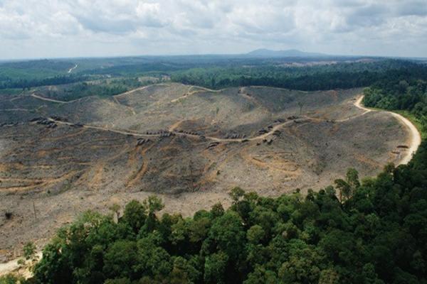 Pembentukan 500 Desa Peduli Api, APP-Sinar Mas Sediakan Rp130 Miliar