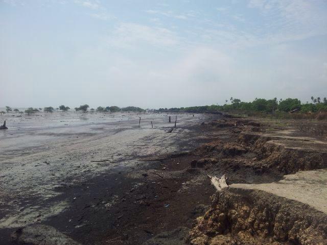 Abrasi Pulau Rangsang Kian Parah