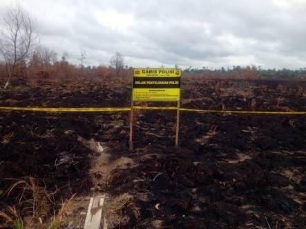 Polda Riau Tetapkan 70 Tersangka Kasus Karhutla