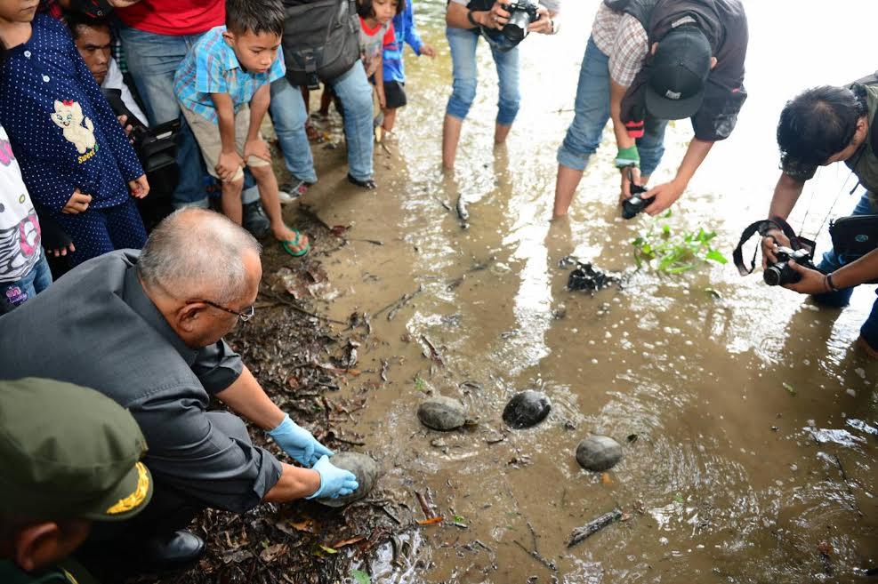 Gubri H Arsyadjuliandi Rachman melepas Kura-kura ke Habitatnya