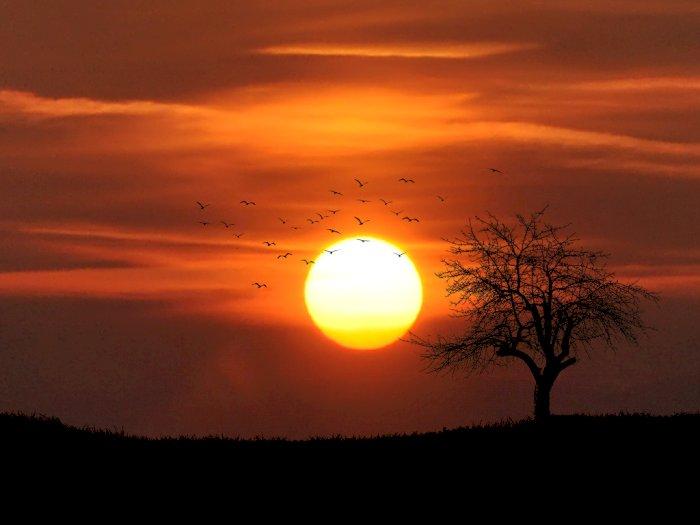 Matahari Terbit di Utara, Benarkah Tanda akan Kiamat? Begini Penjelasan LAPAN