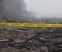 Lahan Terbakar di Bengkalis Dipasangi Police Line