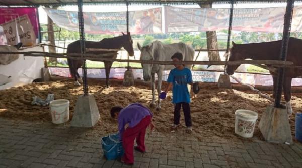 Masjid Agung An-Nur Pekanbaru Selenggarakan Wisata Berkuda dan Juga Memanah