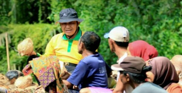 Pembinaan Petani Kelapa, Pemkab Inhil Telah Ajukan Anggaran, Ini Besarannya