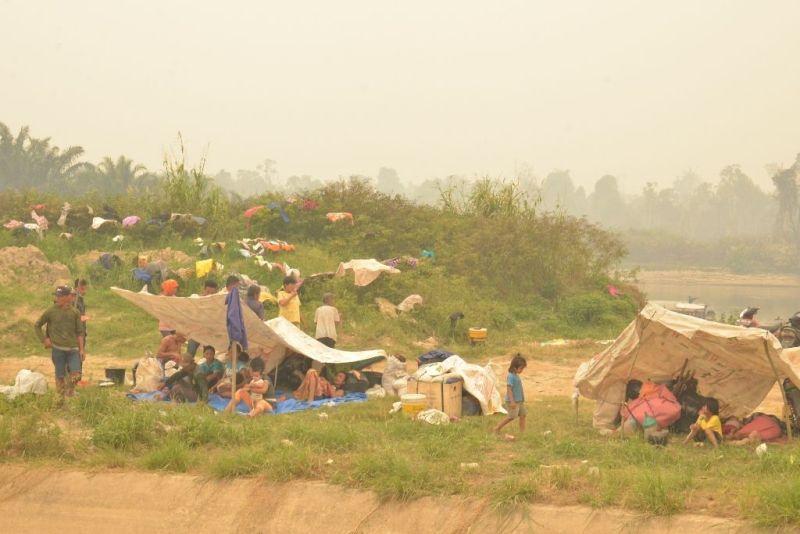 Pengungsi Korban Kabut Asap Kembali ke Rumah